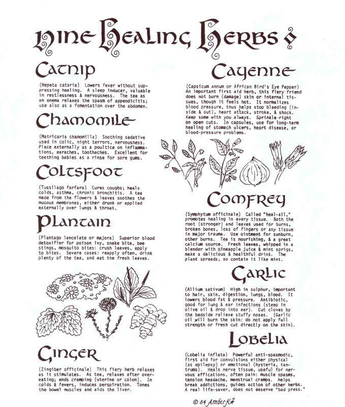 Wiccan Nine Healing Herbs www psychickerilyn com www