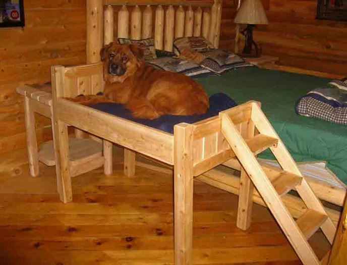 elevated dog bed with stairs u2026 - Raised Dog Beds