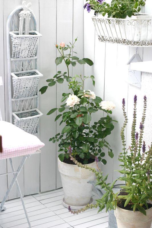 My Little White Home Balkon Balkonien Kreativ