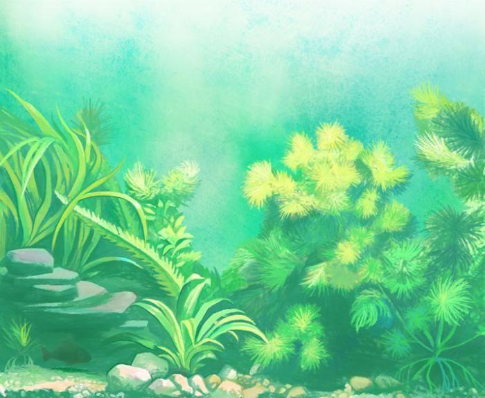 aquarium fragment #neko