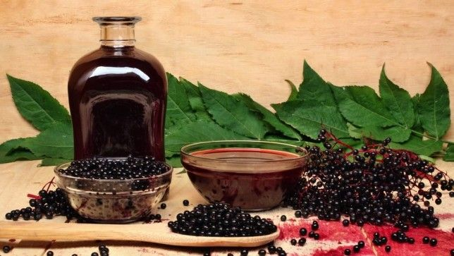 Shrub syrups need to be part of your summer menu If you haven't experimented with these Colonial drinking vinegars, it's time to buy (or mak...