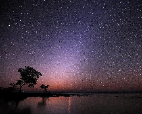A meteor shower before dawn in Florida's Big Pine Key - from top 9 stargazing spots w/ little light pollution.