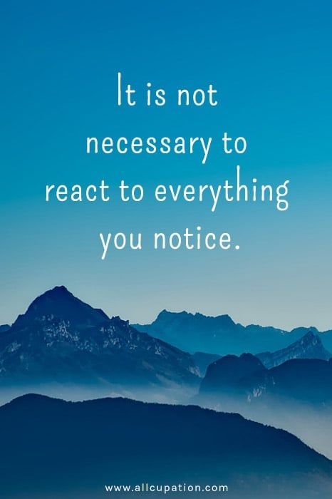 """Image result for """"It is not necessary to react to everything you notice."""""""