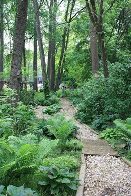 Shade Loving Plants for the Woodland Garden