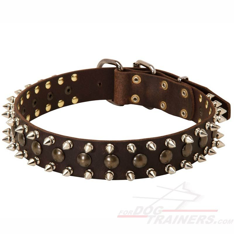 Take Spiked and Studded Leather Dog Collar. Silvery and goldish decor match  perfectly. Dog collars on sale.