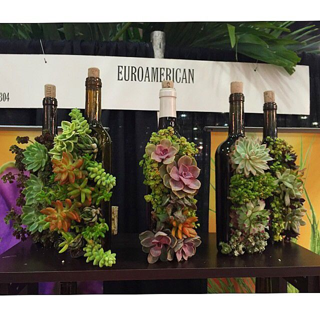 I need to start drinking wine so I can make these super cute planters!  #Cultivate15