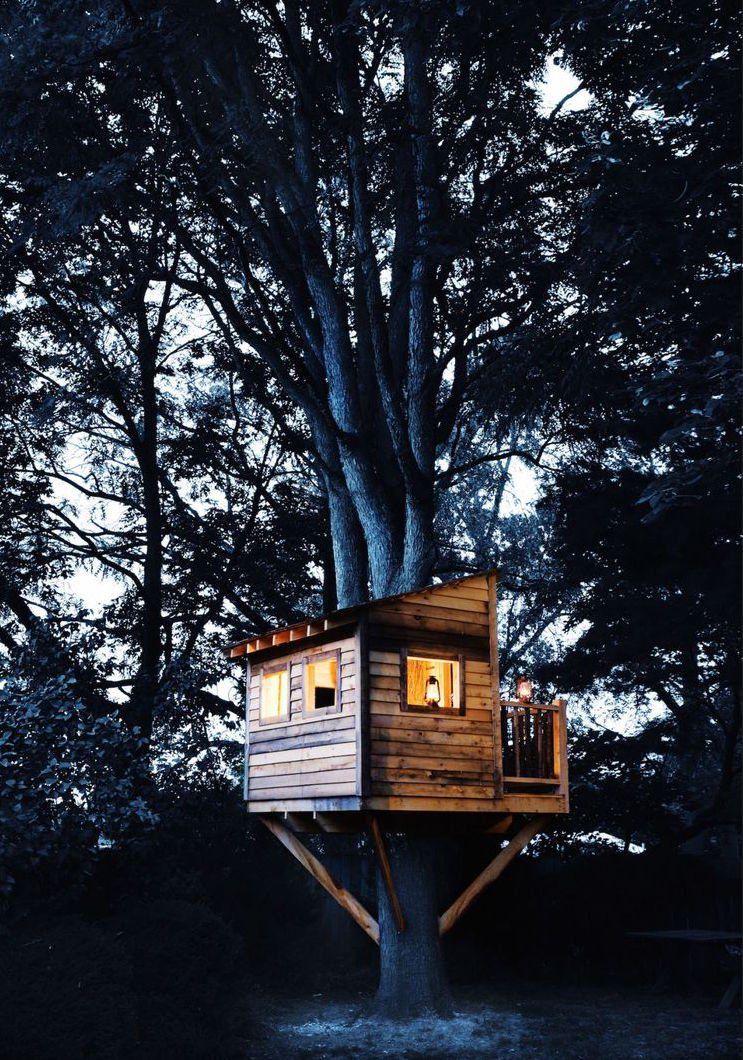 Kleines Baumhaus Grosser Baum Ubernachten Garden House Kids