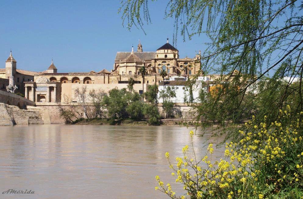 Mezquita-Catedral de Córdoba (Spain)