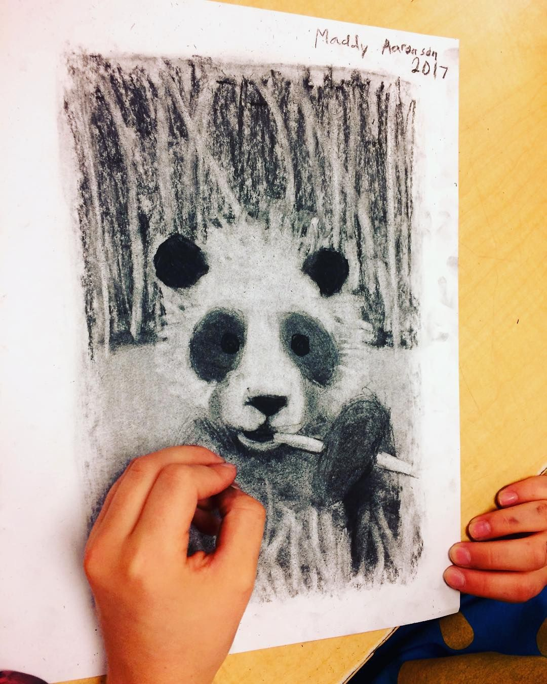 Elementary Middle School Art Lessons Charcoal Pandas 6th Grade