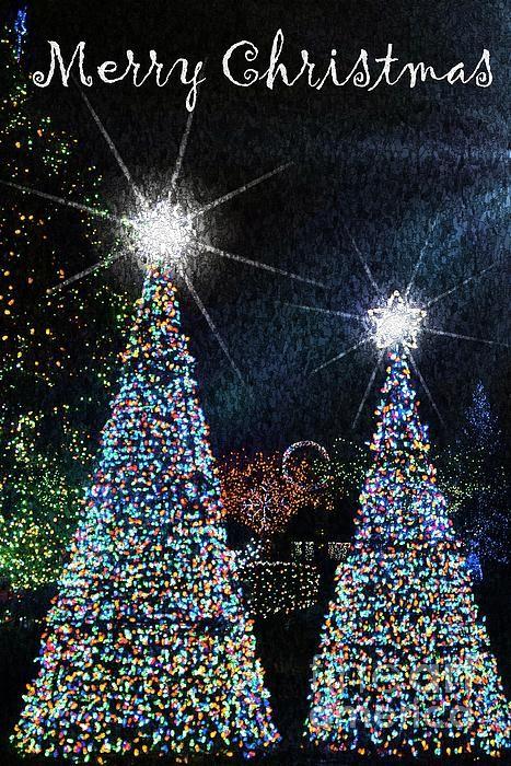 Available as Christmas Greeting Cards Lilliana Méndez Photography