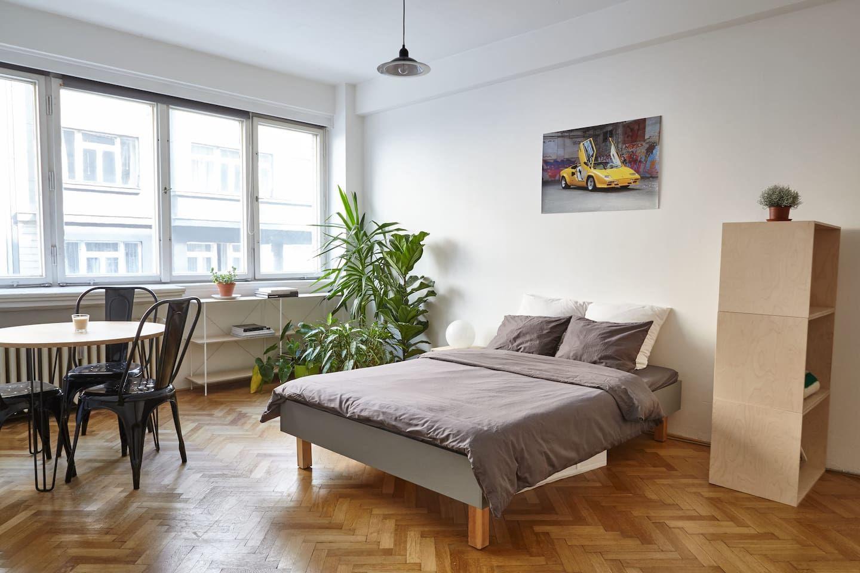 Functionalist apartment: simple but memorable - Byty k pronájmu v Praha, Praha, Česká republika