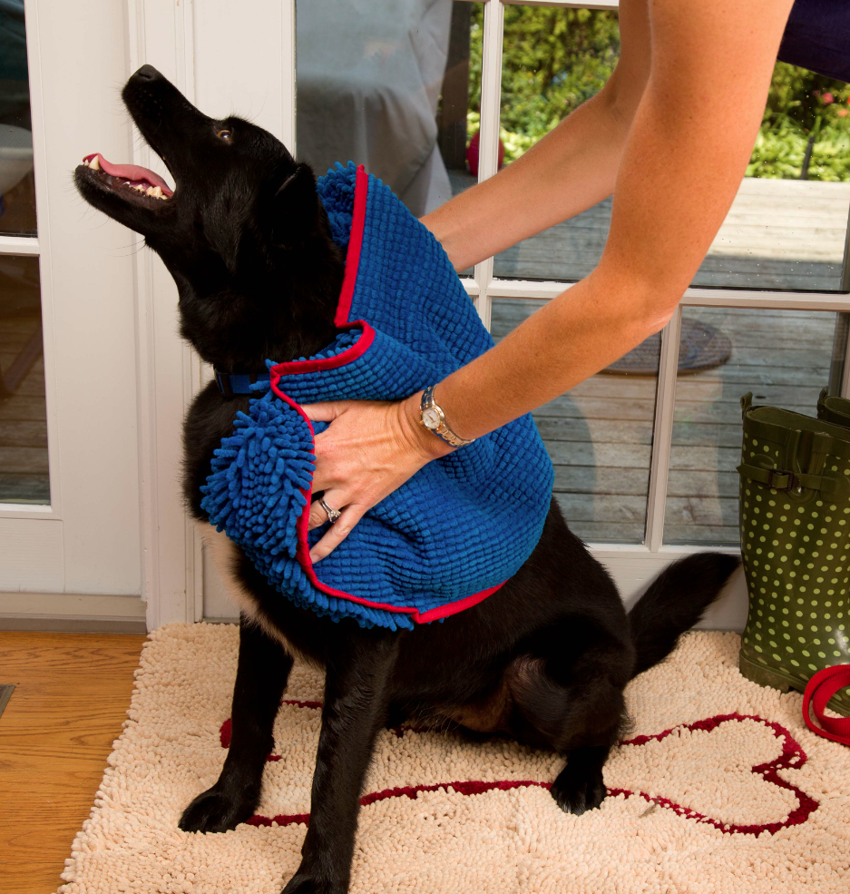 The @Soggy Doggy Super Shammy- an Award Winning Pet Product, People!