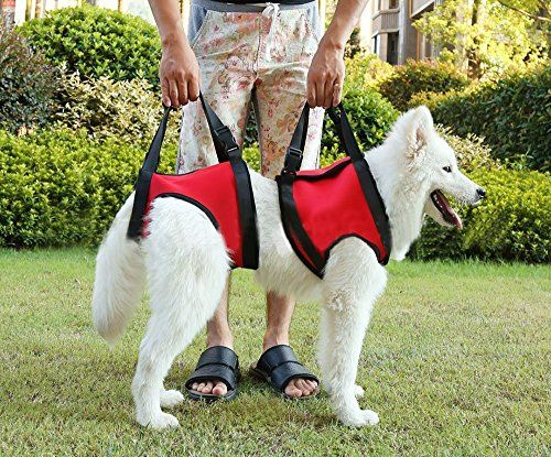 Lifeunion Dog Foreleg And Hind Rear Legs Sling Dog Lift Support