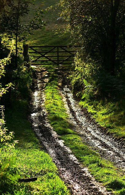 to the gate. via: alpenstrasse