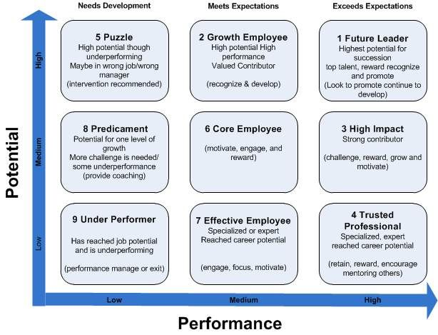 Box Performance  Google Search  Evolution Of The Employee