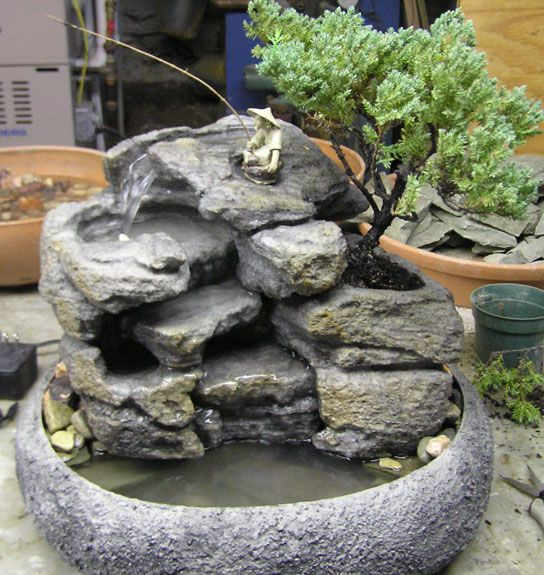 Live Bonsai Tabletop Fountain Cd72 Fontes De Agua Minijardins
