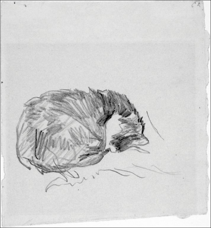 A Cat Curled Up, Sleeping-Édouard Manet (by BoFransson)