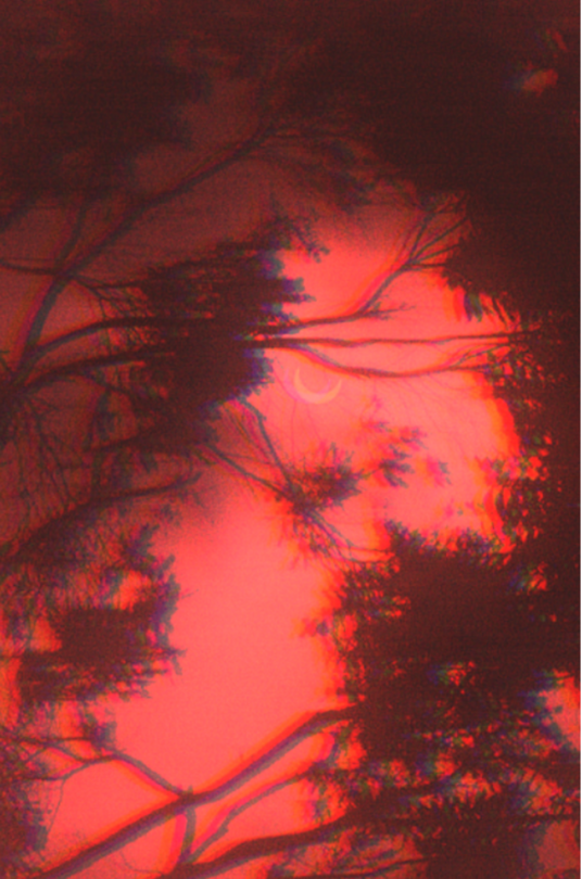 Dark Red Aesthetic Pics