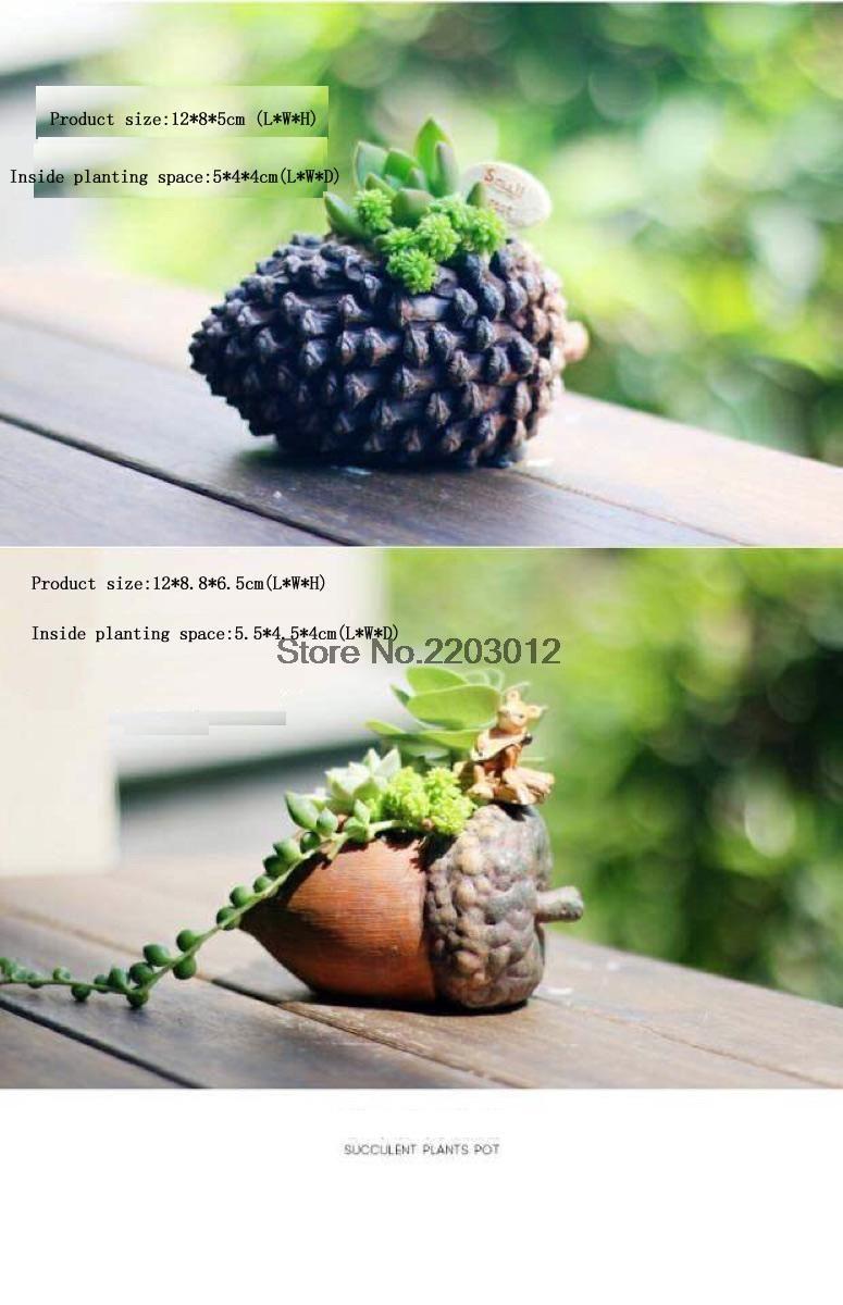 Mini forma porca suculentas vaso de flores 1 pcs em Pote para flores de Home & Garden no AliExpress.com | Alibaba Group