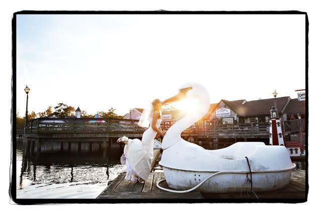 kiss a swan by kella macphee
