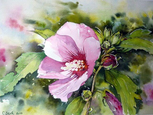Hibiscus Rose 45 3 Cm 37 5 Cm Vendu Expo 2011 Suluboya