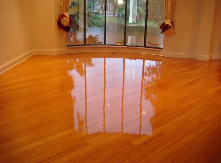 Hardwood Floors, Wd40 On Laminate Flooring