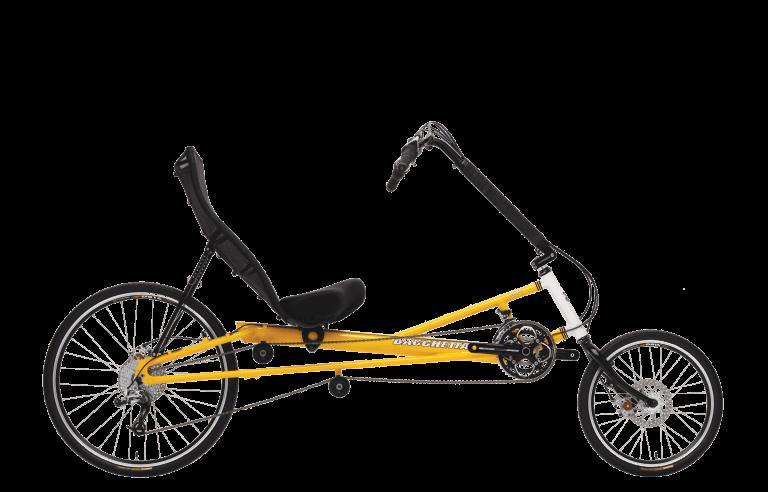 Bella Bacchetta Bikes Exercise Bikes Bike Bicycle