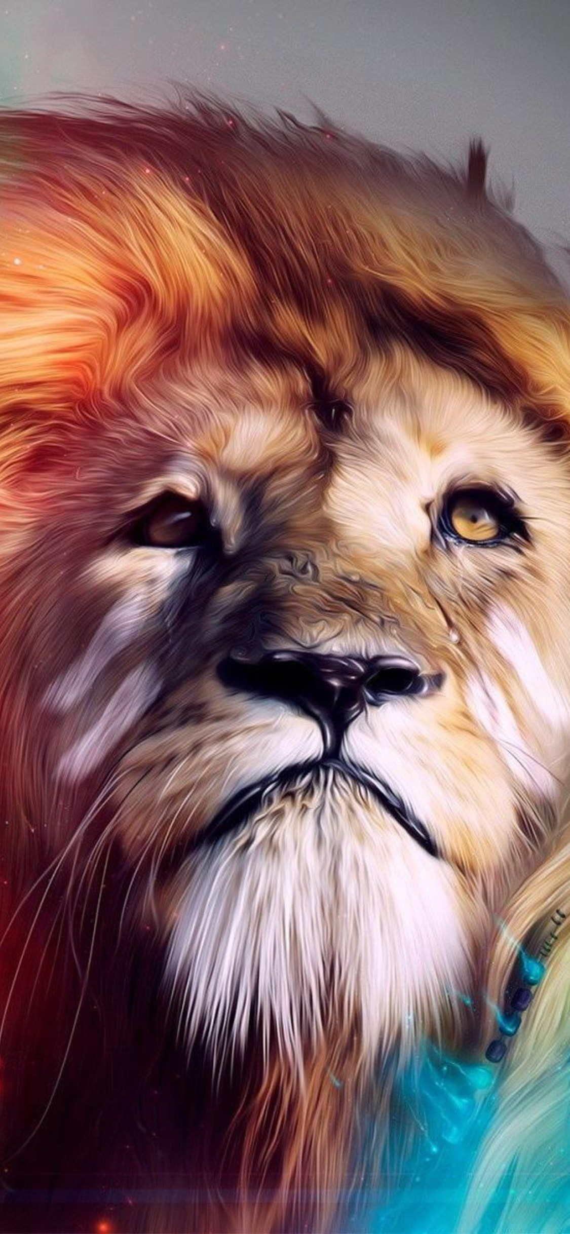 Beautiful Wallpapers For Apple Iphone X Leon De Judah