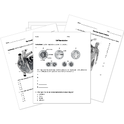 picture regarding Biology Printable Worksheets named Cost-free Printable Biology Checks, Worksheets, and Actions