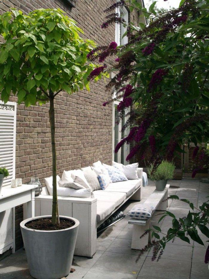 Boom In Pot Tuin.Mooi Voor De Zijkant Van Het Huis Patio Garden Pinterest Van