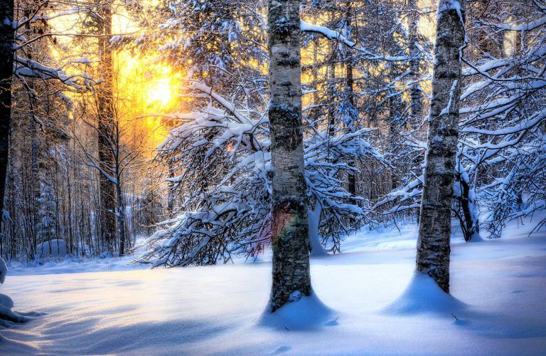 Snow Winter Widescreen Wallpaper Winter Wallpaper Winter Desktop Background Winter Wallpaper Desktop