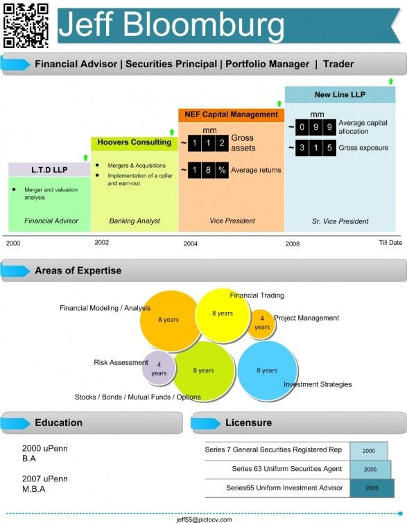 Financial Analyst Visual Resume  Infographic Visual Resumes