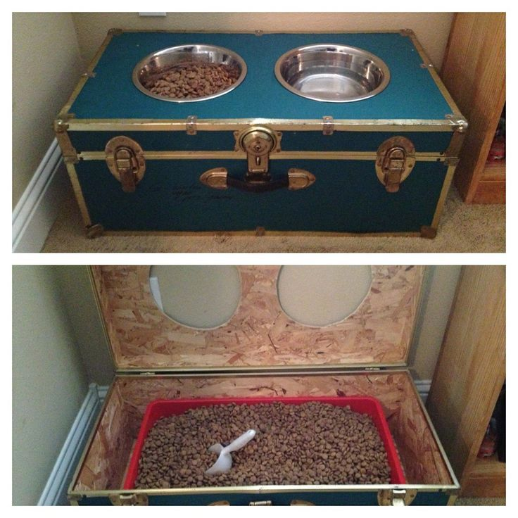Upcycle An Old Trunk Into A Raised Dog Feeder. Plus Use The Bottom For  Storage