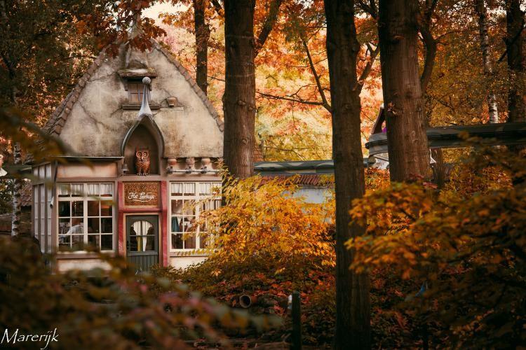 Herfst - Efteling Trip Reports - Forum - VijfZintuigen.nl