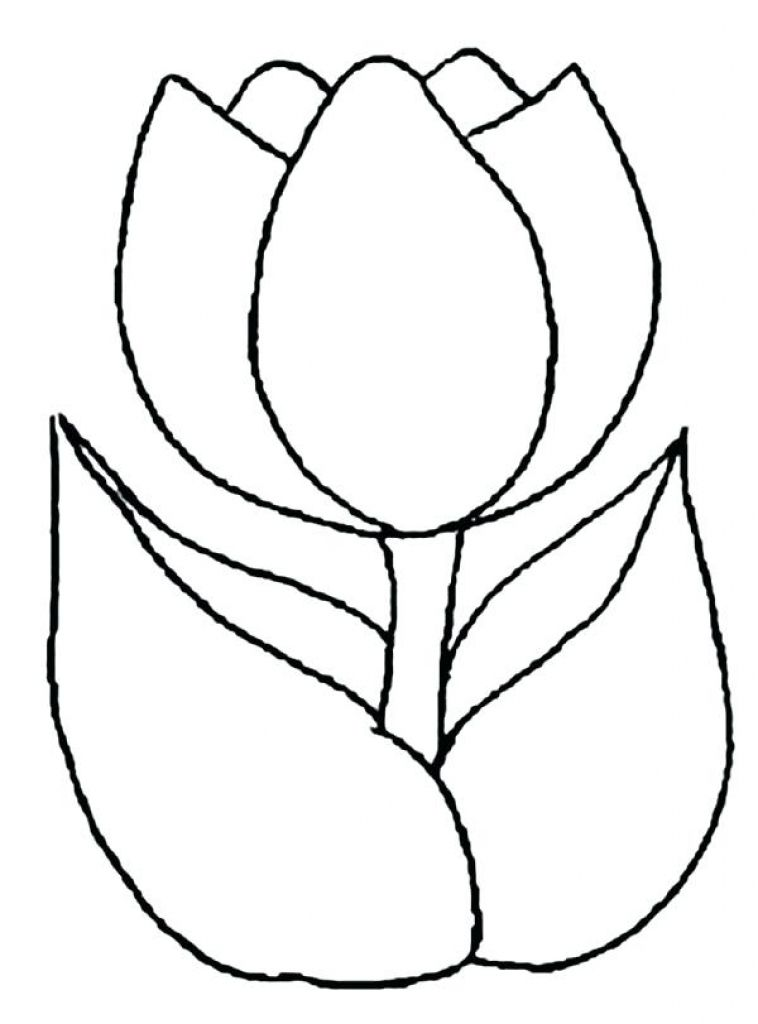 Exclusive Tulips Coloring Pages Free Printable Tulip For Kids For