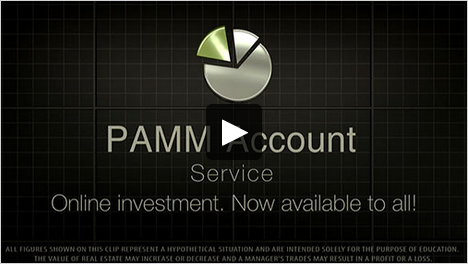 Forex trading pamm managers egypt