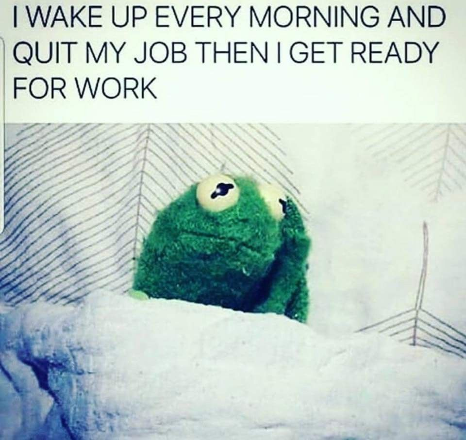 I Wake Up Every Morning And Quit My Job Then I Get Ready For Work Work Humor Work Jokes Work Memes