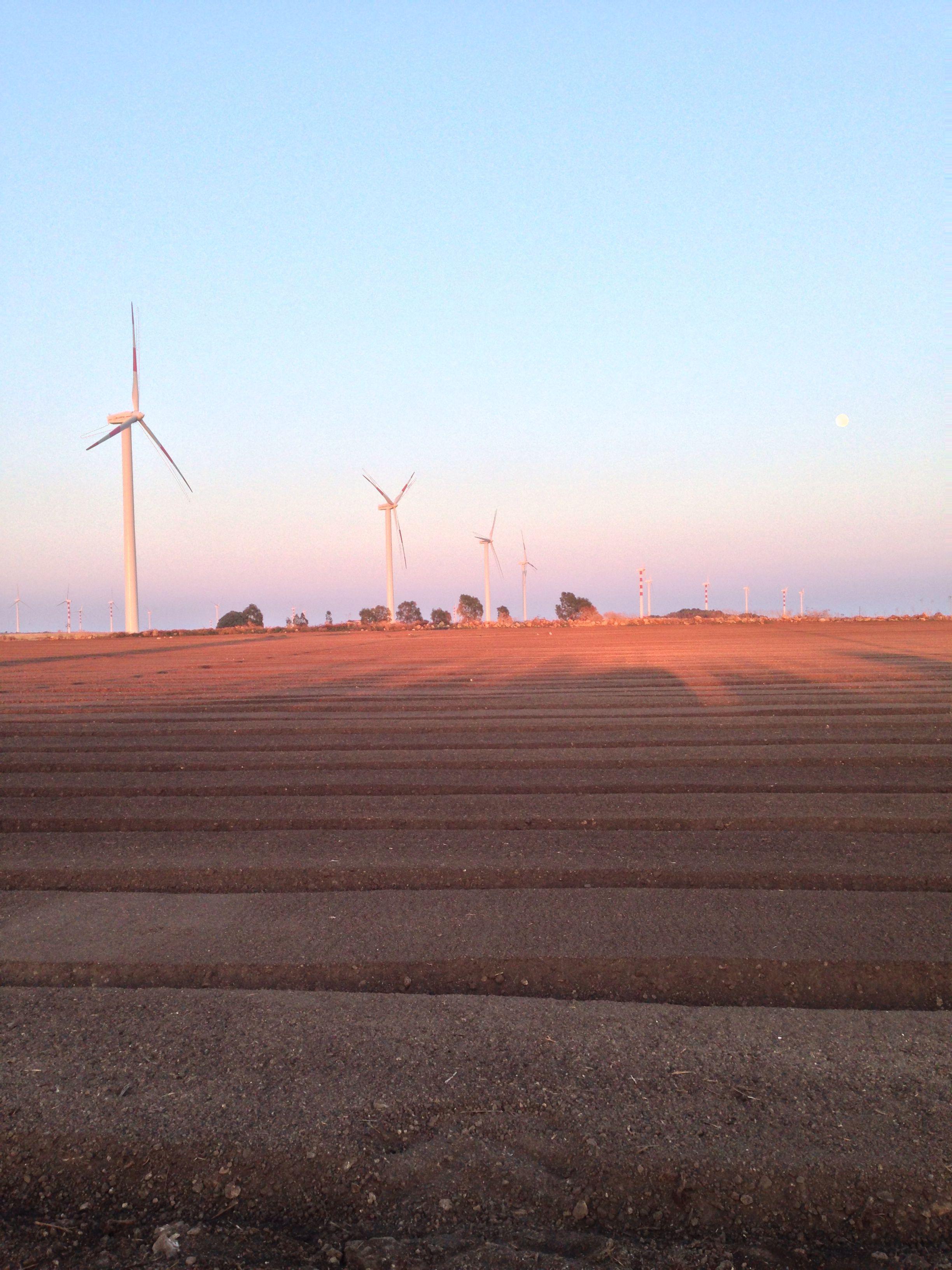 Paesaggio con pale eoliche. Cartoline fuori dal comune da