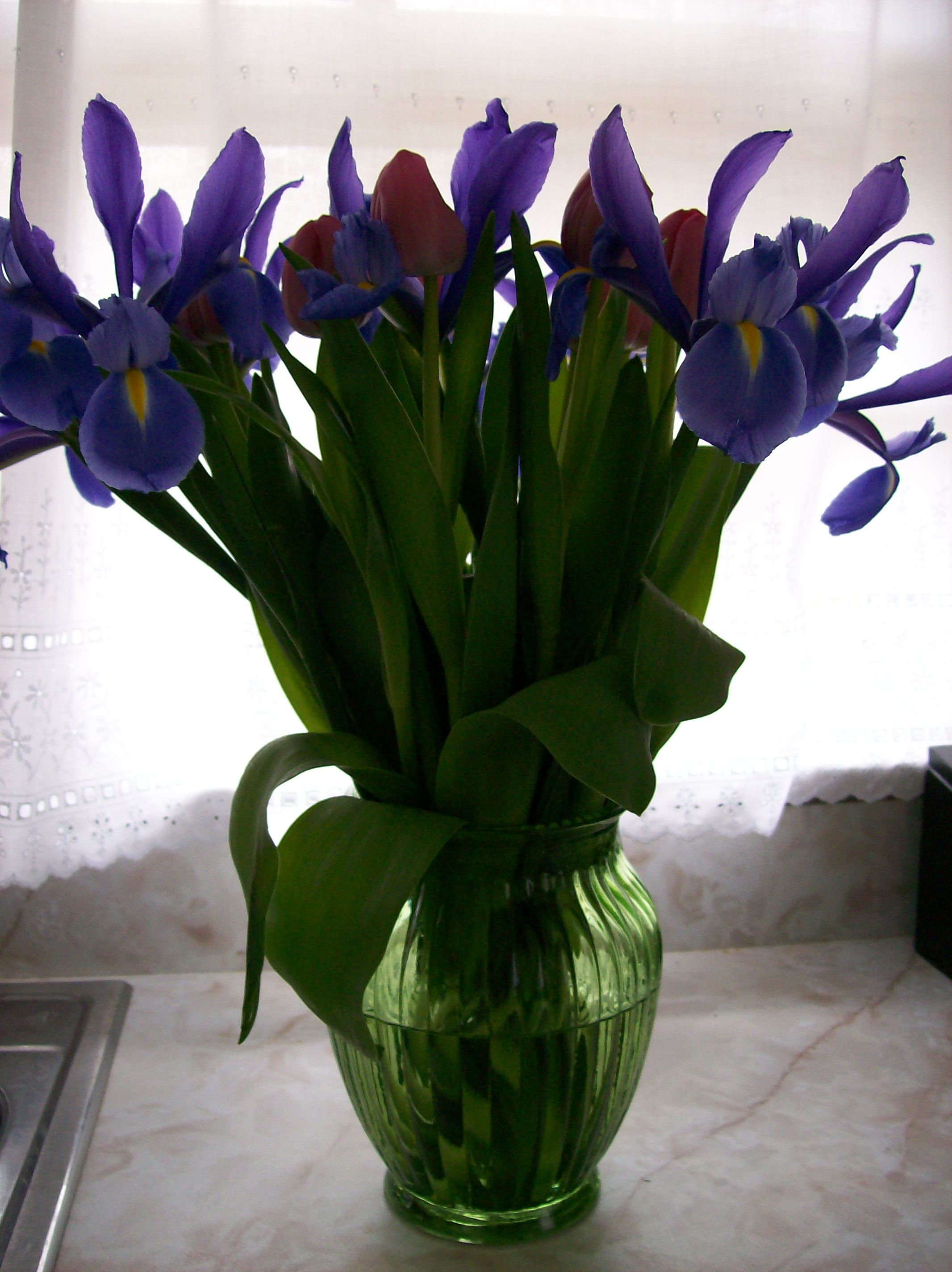Iris and tulip a perfect combination.