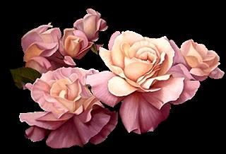 Cantinho Encantado: Gifs Flores