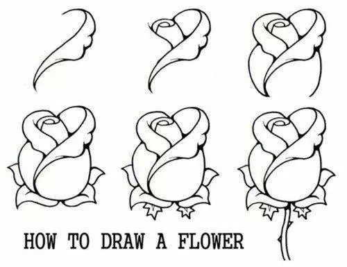 Pin By Liliana Mabel On Trafaret Flower Drawing Roses Drawing Drawing For Beginners