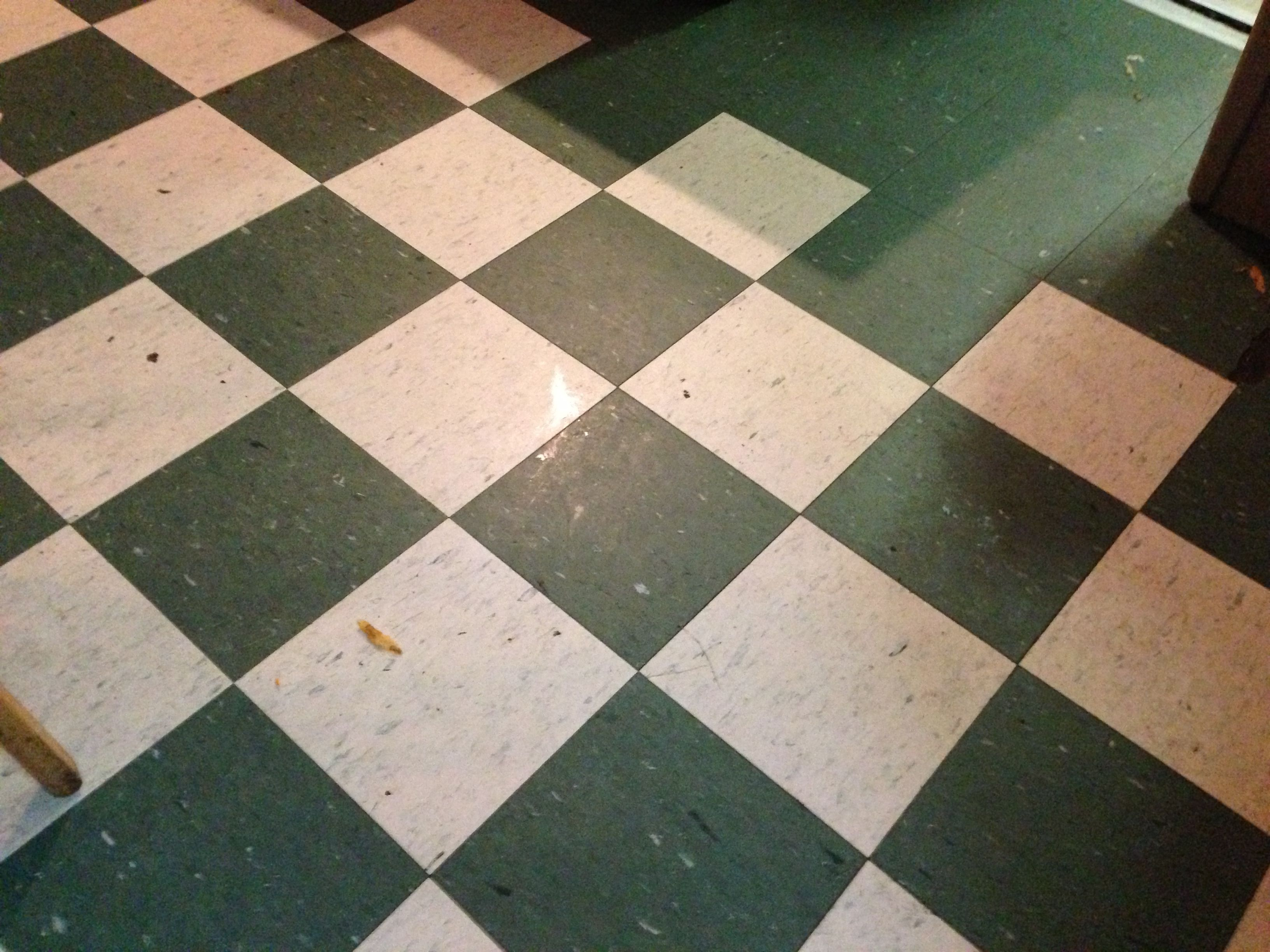 Linoleum Floor Tiles Black And White Linoleum Flooring Flooring Linoleum