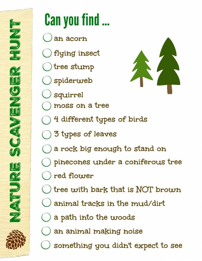 photo about Nature Scavenger Hunt List Printable titled Free of charge Mother nature Scavenger Hunt with printable! Lady Scout