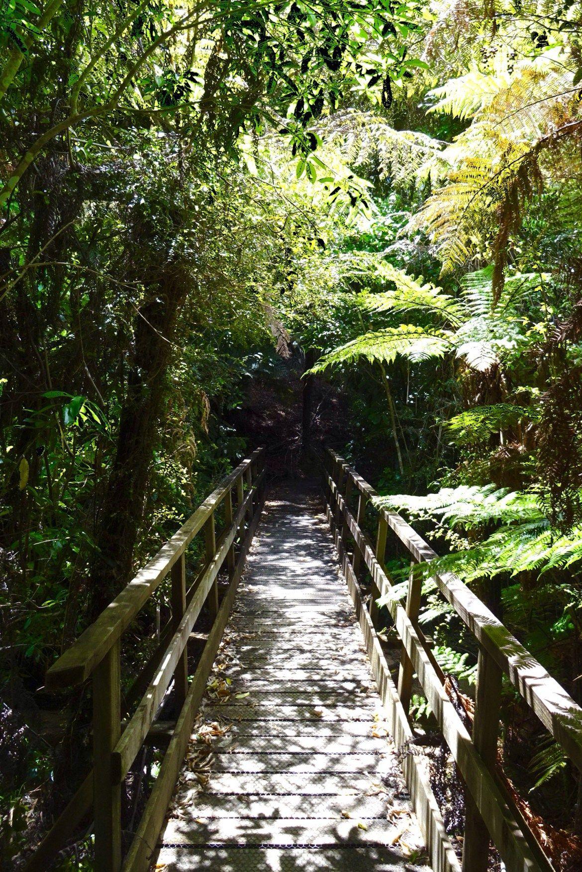 Hiking The Abel Tasman Coast Track - Spin The Windrose