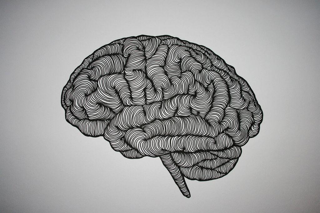 Pin by Juwon Park on Art | Brain drawing, Brain ...