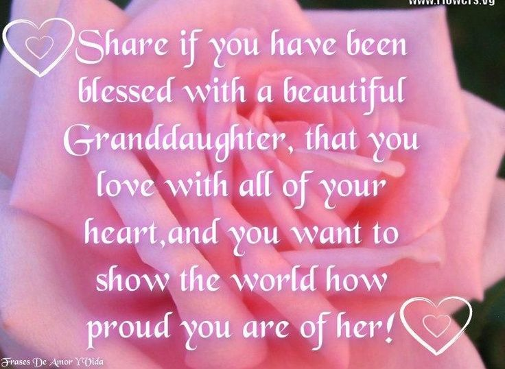 granddaughter quotes | Granddaughters | Projects to Try ...