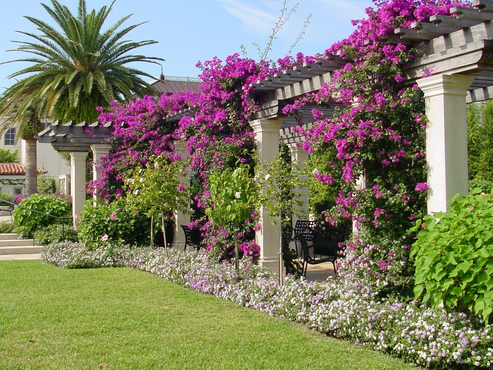 Palm Beach Gardens Dmv Hours Of Operation