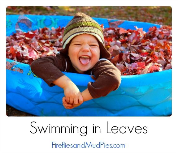 Swimming in Leaves - let them play in the pile... without spreading the pile back over the yard!