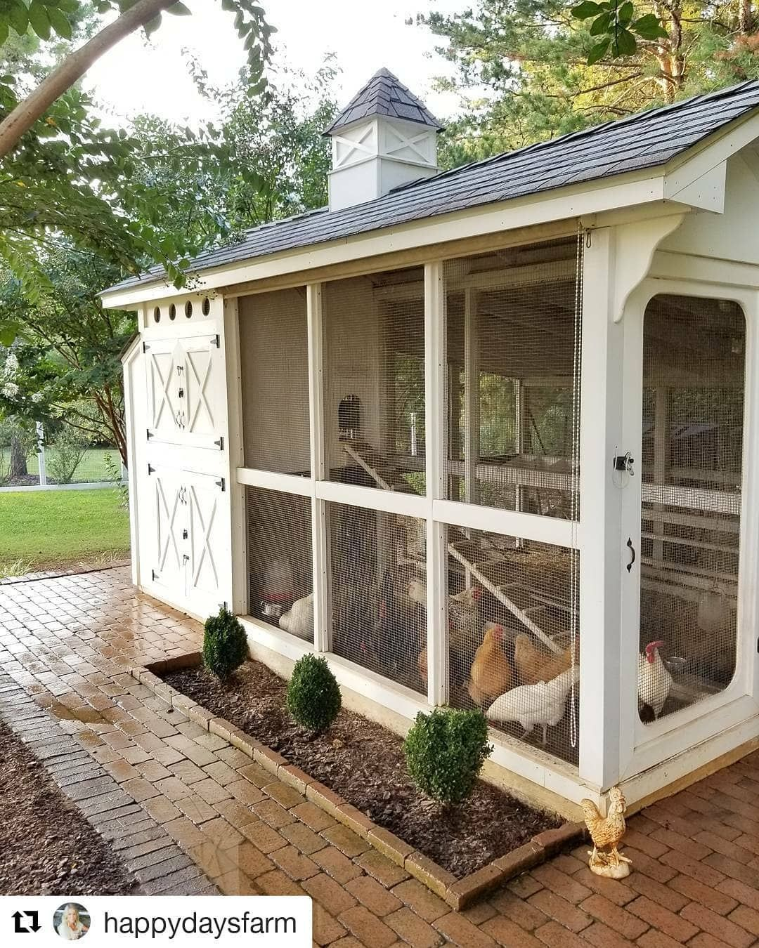 Learn how to build a chicken coop in 4 easy steps. Whether ...