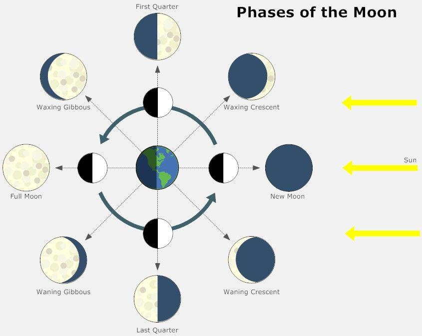moon phase diagram   Diarra